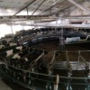 Молочная ферма на 1900 голов